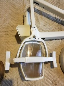 Pelton Crane Ceiling Mount Light Lfii