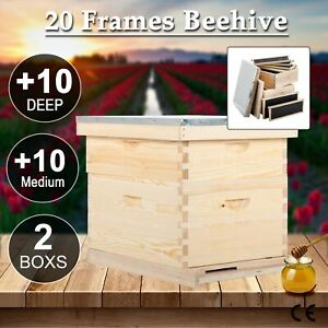 10 Frames Langstroth Beehive Frames Hive Frame Bee Hive Frame W queen Excluder