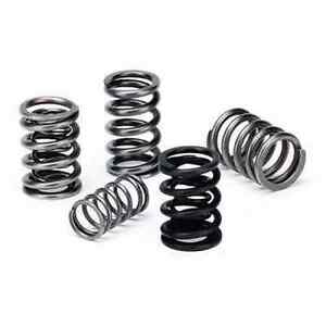 Supertech Dual Valve Springs Set Dohc Vtec For Acura Gsr Integra Honda Civic Si
