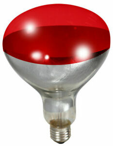 Little Giant 170024 250 Watt Red Bulb For Brooder Lamp