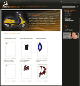 Established Drop Ship Scooter Website That Has Generated Thousands In Revenue