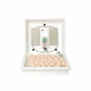 Miller Manufacturing Company 9300 Little Giant Still air Egg Incubator