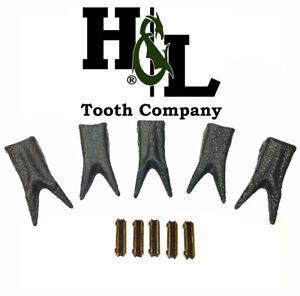 H l 230 Special Edition Dragon Skin Forged Twin Claw Bucket Teeth pins 5 Pack