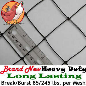 Poultry Netting 50 X 50 2 Heavy Knotted Aviary Anti Bird Net Lasts 7 10 Years