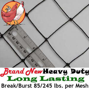 Poultry Netting 25 X 50 2 Heavy Knotted Aviary Nets Bird Quail Pheasant Net