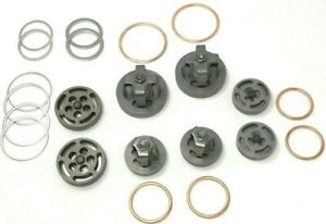 Champion Valve Set With Head Unloaders And Gaskets For R30 Pump Part Z6796