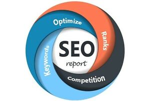 Full Seo Report For Your Website