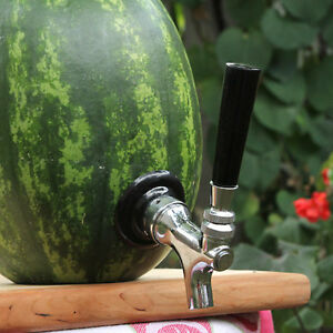 The Watermelon Tap Kit Keg Cocktail Dispenser Shank Kit Picnic Party Drink