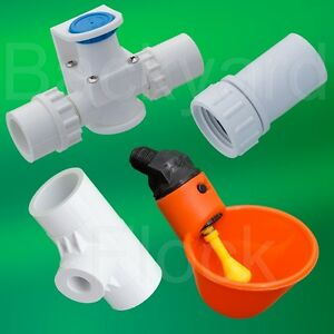 5 Cup Poultry Chicken Watering System W Tees Pressure Regulator