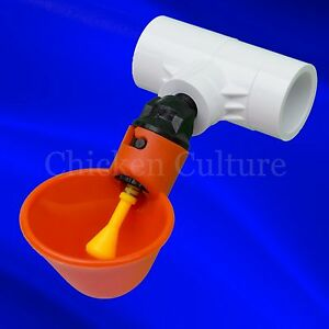 50 Pack Poultry Water Drinking Cups Chicken Hen Automatic Drinker