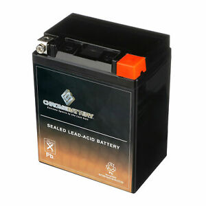 Ytx14ahl bs High Performance Maintenance Free Sealed Agm Motorcycle Battery