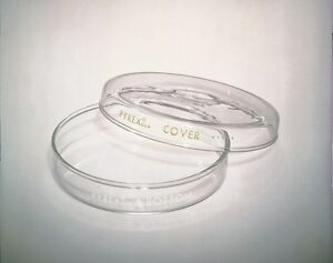 Corning Culture Petri Dish 100mm X 15mm Size 98mm D X 15mm H pack Of 12