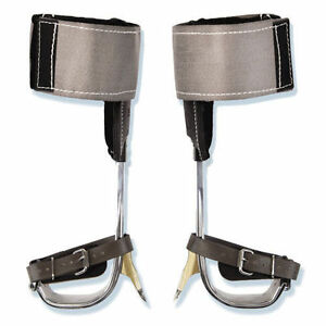 Buckingham Aluminum Spurs With Soft Cushion Wraps W Tree Gaffs