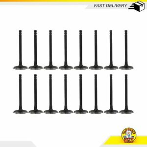 Exhaust And Intake Valves Fits 99 14 Ford Mercury 4 6l 5 4l 6 8l Sohc 16v
