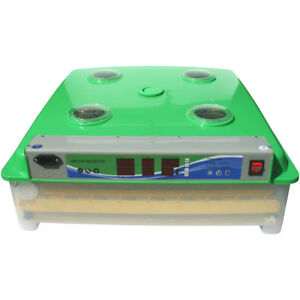 63 Chicken Egg 252 Quail Egg Incubator Automatic Egg Turning