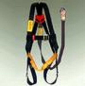 Protecta Harness lanyard Combo Single D pro ab100as2