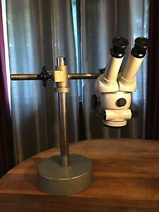 Zeiss Stereo Microscope W Mount Stand And Base Zeiss 10x Eyepieces pair