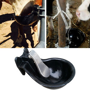 Cattle Automatic Drinking Water Bowl With Cast Iron Copper Valve Material