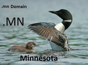 god mn Premium Web Domain Name Use 4 Minnesota Christian Business Website