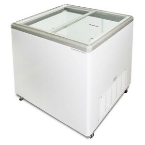 Commercial Flat Lid Display Freezer W sliding Glass euro 10