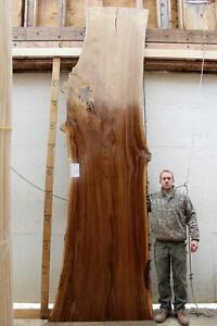 13 8 Long Elm Slab Live Edge Conference Table Natural Raw Wood Tabletop 4493b8