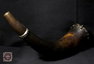 Antique Zulu Powder Horn 19th Century South Africa Rare Item