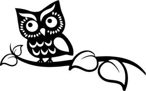 Cute Owl Vinyl Car Window Laptop Decal Sticker