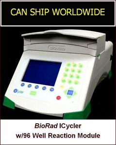 Bio rad Icycler Thermal Cycler System W 96 Well Reaction Module
