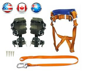 Tree Climbing Spike Set Spurs Safety Belt Safety Lanyard
