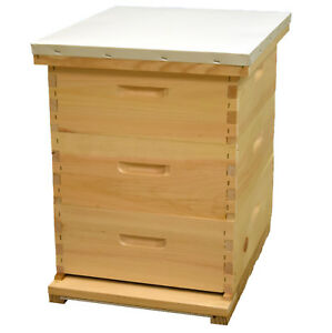 Beehive Complete With Frames 3 Medium Hive Bodies beekeeping