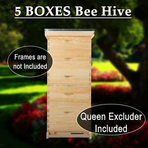 10 frame Size Beekeeping Kits Bee Hive Frame beehive Frame W queen Excluder