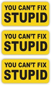 (3) Hard Hat Stickers / Cant Fix Stupid Funny Helmet Decals / Labels Laborer USA