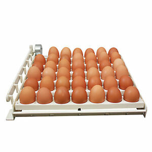 Harris Farms Free Range Automatic Egg Turner