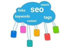 Searchengineoptimization Service For 1 Month Your Website On Google s 1st Page