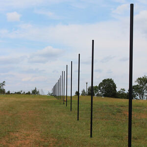 10 Deer Fence Heavy Line Posts 61 Pack Galvanized Pvc Coated Steel