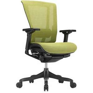Staples Raynor Nefil Elite Chair 3d Green Technical Mesh Model 23564 New