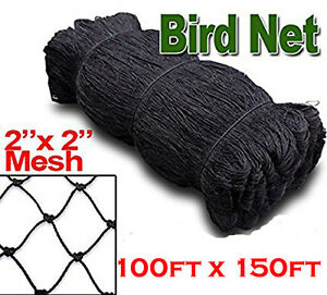 100 x150 Bird Netting Net Netting For Bird Poultry Avaiary Game Pens 2 x2 159