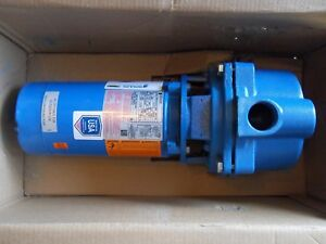 Goulds Water Technology 1 Hp Centrifugal Pump 115 230 Voltage 1 1 2 Inlet gt10