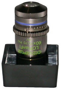 Olympus Lcplanfl 60x Phase Objective For The Ix Ckx Series Inverteds