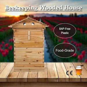 Cedarwood Super Brood Beekeeping Box For 7 Pcs Auto Pour Honey Bee Hive Frames Y