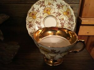 Rosina Daffodils And Brown Flowers 979r Bone China Cup Saucer