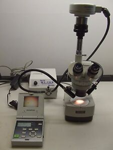 Wolfe Stereomicroscope With Olympus Dp12 Digital Camera And Fiber Lite Mi 150