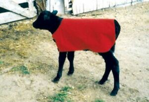 Calf Foal Blanket Coat Warmer Red Ripstop Nylon Insulated Waterproof Large