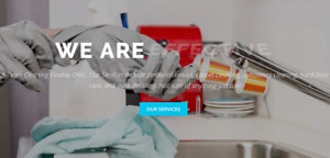Cleaning Company Website Landing Page For Sale free Domain hosting traffic