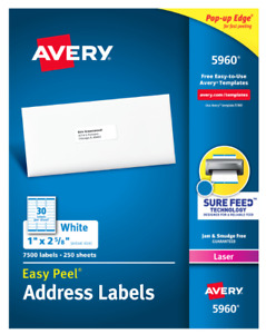 Avery 5160 5960 8160 Address Labels 30 Labels sheet 600 900 Labels