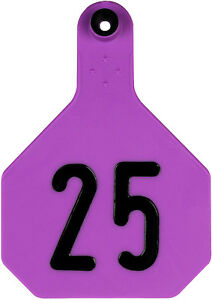 Y tex Large 4 Star Cattle Ear Tags Purple Numbered 176 200