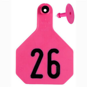 Y tex 4 Star Large Cattle Ear Tags Pink Numbered 101 125