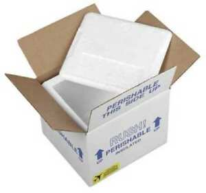 Insulated Overnight Shipping Foam Carton 1 2 Day Polar Tech On36c 2 Pack