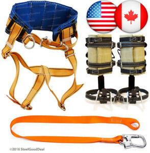 Tree Climbing Spike Set Spur Gaffs Safety Belt Safety Lanyard Harness Saddle New