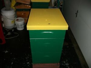 Full Honey Bee Hive Except For Frames And Foundation